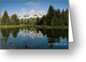 Western Trees Greeting Cards - Schwabacker Landing Grand Tetons Greeting Card by Jim Chamberlain