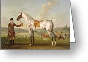 Hounds Greeting Cards - Scipio - Colonel Roches Spotted Hunter Greeting Card by Thomas Spencer
