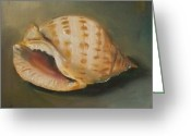 Seashell Art Greeting Cards - Scotch Bonnet Seashell Greeting Card by Kristine Kainer
