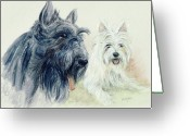 Westie Greeting Cards - Scottie and Westie Greeting Card by Morgan Fitzsimons