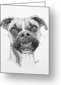 Photorealism Greeting Cards - Scout Greeting Card by Mike Ivey