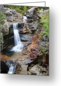 Grafton County Greeting Cards - Screw Auger Falls - Maine  Greeting Card by Erin Paul Donovan