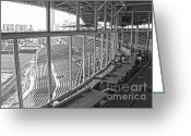 Wrigley Field Greeting Cards - Scribes Roost Greeting Card by David Bearden