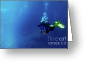 Contemplation Greeting Cards - Scuba diving Greeting Card by Sami Sarkis