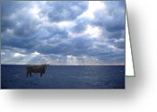 Made In The Usa Digital Art Greeting Cards - Sea Cow Greeting Card by Sharon Mick