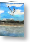 Sea Life Pastels Greeting Cards - Sea Gulls Greeting Card by Nancy Rucker