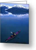 Sea Kayak Greeting Cards - Sea Kayaking Through Still Water Greeting Card by Bill Hatcher