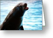 Hunter Photo Greeting Cards - Sea-Lion Greeting Card by Carlos Caetano