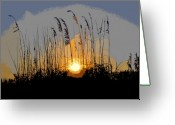 Sea Oats Digital Art Greeting Cards - Sea oats at sunset Greeting Card by David Lee Thompson
