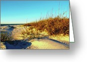 Sea Oats Digital Art Greeting Cards - Sea Oats Greeting Card by Dale Jackson