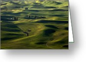 Wheatfields Photo Greeting Cards - Sea of Green Greeting Card by Mike  Dawson
