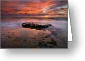 San Diego California Greeting Cards - Sea of Red Greeting Card by Mike  Dawson