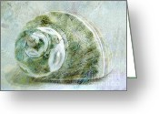 Seashell Art Mixed Media Greeting Cards - Sea Shell I Greeting Card by Ann Powell