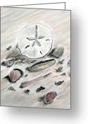 Ocean Landscape Pastels Greeting Cards - Sea Shells Greeting Card by Diane Frick