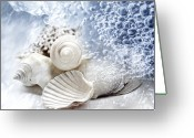 Sea Animal Greeting Cards - Sea Snails Greeting Card by Maika 777