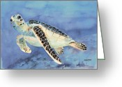 Amphibian Greeting Cards - Sea Turtle Greeting Card by Arline Wagner