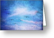 Seabirds Greeting Cards - Seabirds in Formation Greeting Card by Traci Lehman