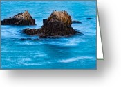 Safe Haven Greeting Cards - Seabirds on Rocks Greeting Card by Utah Images