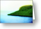 Dune Grass Greeting Cards - Seagull Island Greeting Card by Bill Cannon