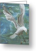 Sea Life Pastels Greeting Cards - Seagull Greeting Card by Jim Barber Hove