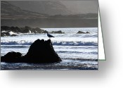 Inland Greeting Cards - Seagull Rock Greeting Card by Aidan Moran