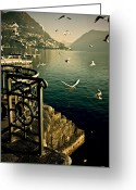 Railings Greeting Cards - Seagulls Greeting Card by Joana Kruse