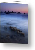 Seal Greeting Cards - Seal Rock Glow Greeting Card by Mike  Dawson