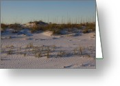 Grayton Beach Greeting Cards - Seaside Dunes 4 Greeting Card by Charles Warren