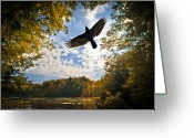 Crow Greeting Cards - Season of change Greeting Card by Bob Orsillo