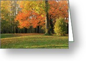 Quite Greeting Cards - Seasonal changes in a park. Greeting Card by Gino Rigucci