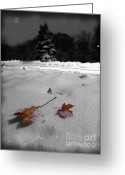 Snowy Night Greeting Cards - Seasonal Greetings Greeting Card by Lj Lambert