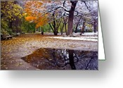 Puddle Greeting Cards - Seasons Changing Greeting Card by Sven Brogren