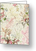 Pink Flower Branch Greeting Cards - Seaweed design for silk material Greeting Card by William Kilburn