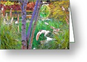 Signed Greeting Cards - Secluded Pond Greeting Card by Chuck Staley