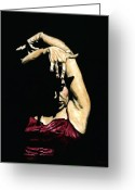 Performance Greeting Cards - Seclusion del Flamenco Greeting Card by Richard Young