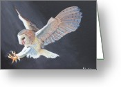 Owl Prints Greeting Cards - Second Look Greeting Card by Bill Werle