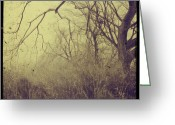 Photo Art Greeting Cards - Secret Garden Greeting Card by Gothicolors With Crows