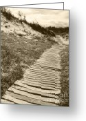 Gerlinde-keating Greeting Cards - Secret Path - Award-Winning Photo Greeting Card by Gerlinde Keating - Keating Associates Inc