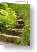 Mixed Media Photo Greeting Cards - Secret Stairs Greeting Card by Bonnie Bruno