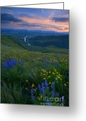 Balsamroot Greeting Cards - Selah Sunset Greeting Card by Mike  Dawson