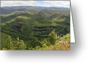 Contemplation Greeting Cards - Senior Couple contemplating Waimea canyon in Hawaii Greeting Card by Sami Sarkis