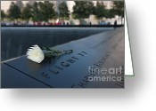 September 11 Greeting Cards - September 11 Memorial Flower Greeting Card by Clarence Holmes