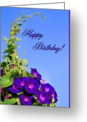 Flower Greeting Card Greeting Cards - September Birthday Greeting Card by Kristin Elmquist