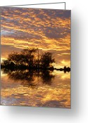 Autumnal Digital Art Greeting Cards - September Evening Greeting Card by Sharon Lisa Clarke