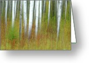 Abstract Impressionism Photo Greeting Cards - September Stroll Greeting Card by Bill Morgenstern