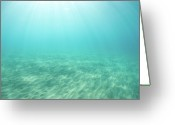 Pacific Islands Greeting Cards - Serene Sea Greeting Card by M Sweet