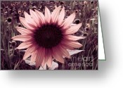 Trish Greeting Cards - Serene Greeting Card by Trish Clark