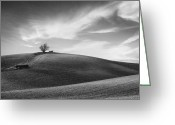 Hillside Greeting Cards - Serenity - Black and White Greeting Card by Larry Marshall