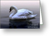 Seabirds Digital Art Greeting Cards - Serenity Greeting Card by Dale   Ford