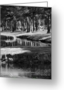 Landscape Posters Greeting Cards - Serenity Greeting Card by Gerlinde Keating - Keating Associates Inc